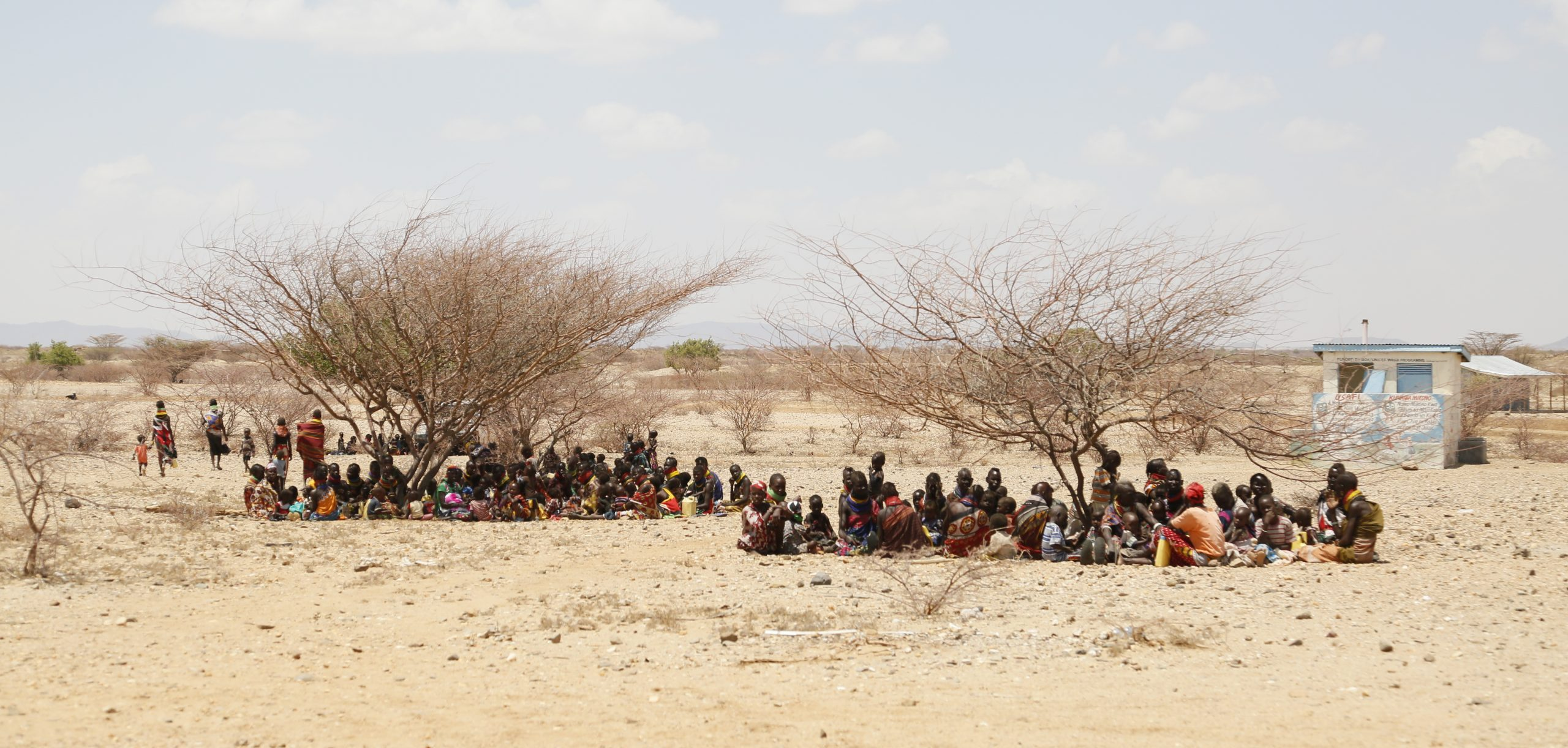 Two bare trees in an arid landscape provide little shelter for two large groups women and children sitting on the group